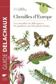 chenilles.jpg