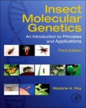 insect molecular.jpg