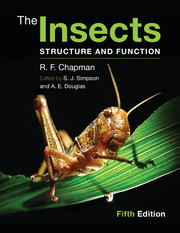 insects structure.jpg