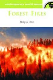 fires2.JPG