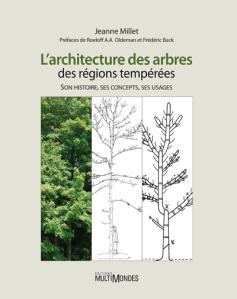 architecture des arbres