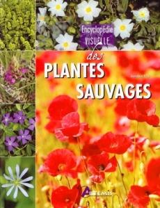 encyclopédie plantes sauvages