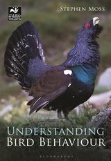 understanding bird.jpg