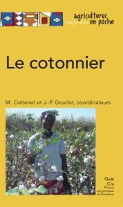 cotonier