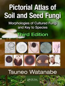 seed fungi